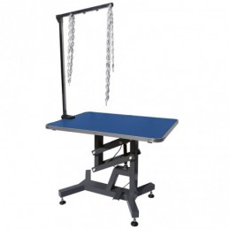 PNEUMATIC TABLE WITH REMOVABLE HOLDING ARM -M880 -AGC CREATION