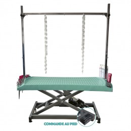 EVOLUTECH 130 - ELECTRIC ADJUSTABLE TABLE - METAL CHASSIS -M819-AGC-CREATION