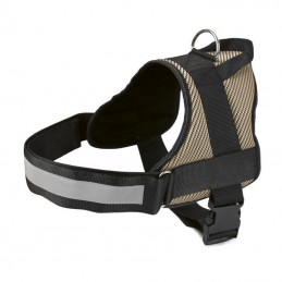 GOLD HARNESS WITH REFLECTIVE STRIPE -250024-AGC-CREATION