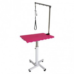 PNEUMATIC TABLE WITH REMOVABLE HOLDING ARM -M813 -AGC CREATION