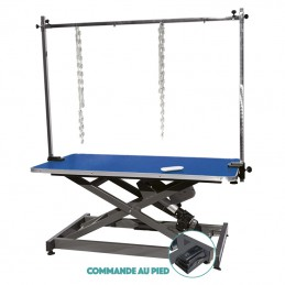 EVOLUTECH 130 - ELECTRIC ADJUSTABLE TABLE - METAL CHASSIS -M892 -AGC CREATION